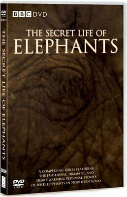 The Secret Life of Elephants [DVD] - DVD  NIVG The Cheap Fast Free Post