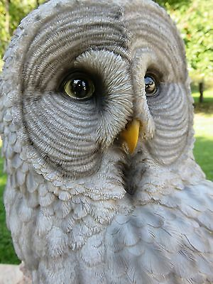 GREAT GREY GRAY OWL FIGURINE HOOTER STATUE WISE OLD resin 20.5 IN. NEW