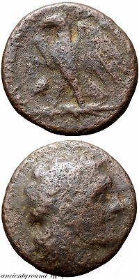 Ancient Greek Coin Ae 17 Ptolemy Ix Soter 116-106 Bc