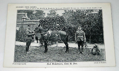 WW1 Postcard 2nd MIDDLESEX REGIMENT Animal Mascots FUND SICK & WOUNDED HORSES