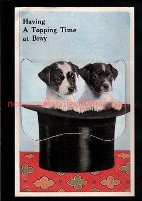 BRAY Co Wicklow TWO JACK RUSSELL PUPPIES TOP HAT NOVELTY PULL-OUT POSTCARD - 25