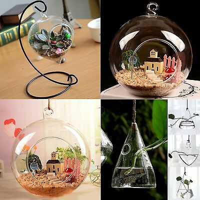 Hanging Glass Ball Vase Flower Plant Pot Terrarium Container Decor CHIC