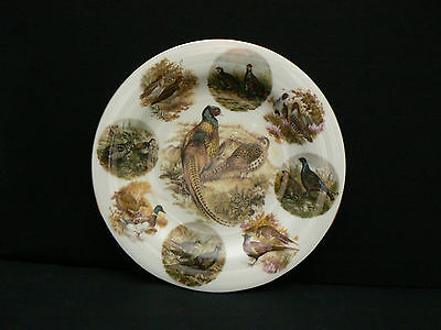 Macdonald Fine Bone China Collector Plate -  Pheasants And Game Birds