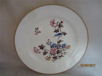 18Th Century Swansea Floral & Bird Hand Painted Plate
