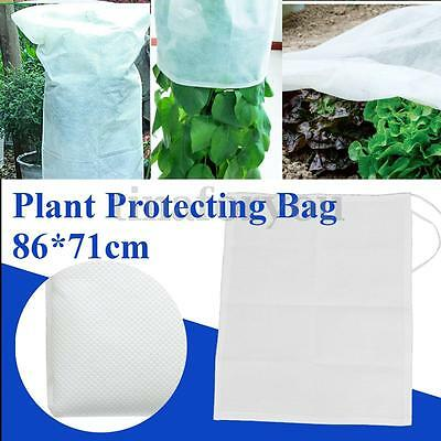 Warm Worth 34'' x 28'' Plant Frost Tree Shrub Protecting Protect Bag & Cover