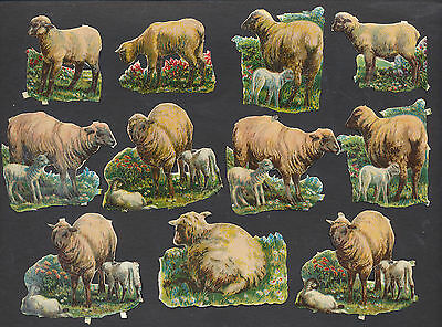 S5005 Victorian Die Cut Scraps: 11 Lambs & Sheep