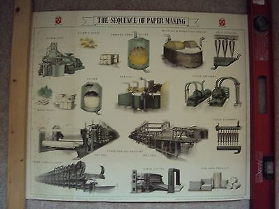 Vintage Industrial 1950's Paper Making Poster from Culter Mills Paper Co