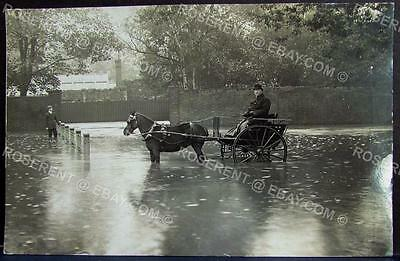 1900s  Horse and Trap on a Flooded Road -  Real Photo Postcard