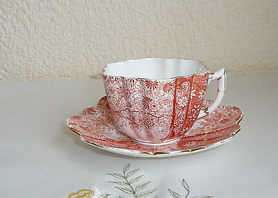 Vintage Shelley Wileman Daisy Jungle Pattern Cup & Saucer