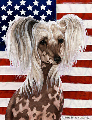 Large Indoor/Outdoor Patriotic II Flag - Chinese Crested 32069