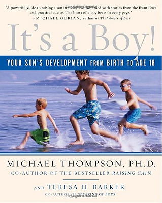 It's a Boy!: Your Son's Development from Birth to Age 1 - Paperback NEW Thompson