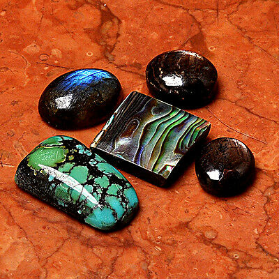 Gemstone Lot 5 Pcs Abalone Shell Cabochon Loose Gem Cab AUG55