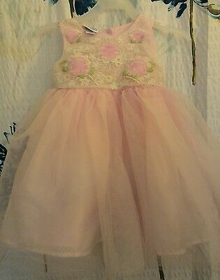 Toddler girls 24 month Blueberi Boulevard pink floral tulle lace fancy dress 2T