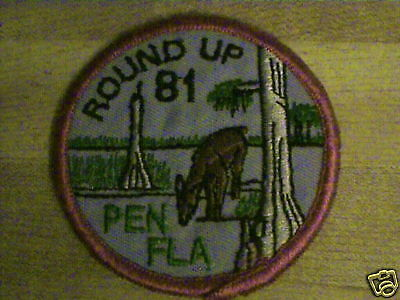 Vtg,1981,b.s.a.round Up Scouting Pa,fl,rare Old Patch