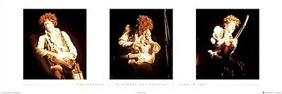 JIMI HENDRIX ~ MONTEREY POP LIVE 21x62 MUSIC POSTER Guitar NEW/ROLLED!