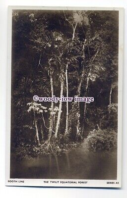 cb0906 - Booth Line issued postcard - The Twilit Equatorial Forest