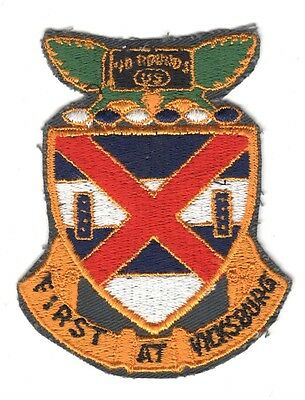 Army Patch:  13th Infantry Regiment