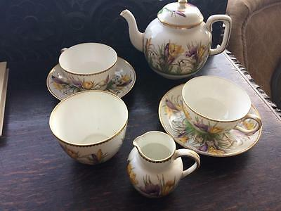 Fords Cauldon China T Goode & Co Vintage Tea Set Crocus Pattern Gilt Edge