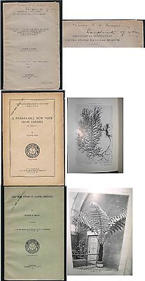 Three William R. Maxon Smithsonian Institution Booklets about Ferns 1901 Signed