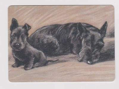 Swap Playing Cards 1  Scottish Terrier Scotty dog pup