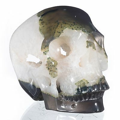 """5.51"""" Natural Geode Agate Hand Carved Skull/Head,Reiki Healing#23T65"""