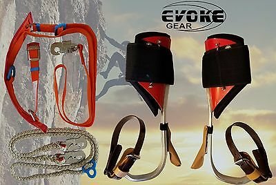 Tree Climbing Spike Set Aluminum Pole Climbing Spurs+ Harness Kit Lanyard Evoke
