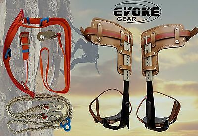 Tree Climbing Spike Set Pole Climbing Spurs Adjustable Harness Lanyard EvokeGear