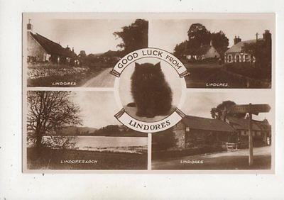 Good Luck From Lindores Fife Scotland Vintage RP Postcard Black Cat
