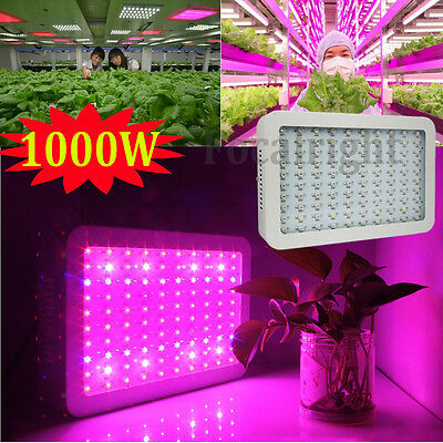 1000W Full Spectrum Hydro LED grow light for medical plants veg bloom Fruit