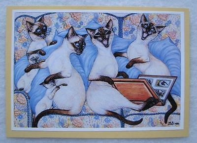 Siamese Cats Comic Photographic Print Signed 1980