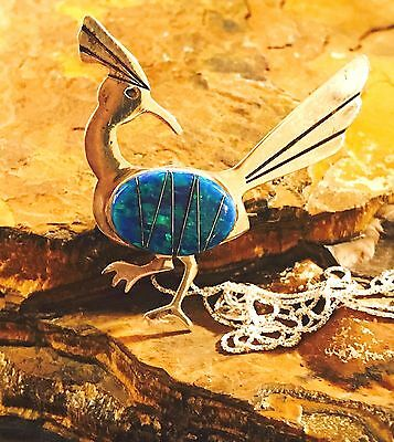 Native American, AZ Roadrunners is looking out for the Coyote Beep beep