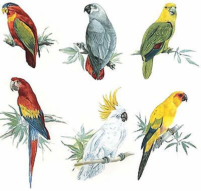 """6 Tropical Parrots 4-3/4"""" to 6-1/2""""  Waterslide Ceramic Decals Tx"""