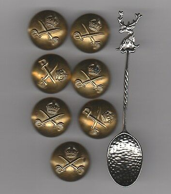 WW2 British Army Buttons Army PhysicalTraining Corps APC 1stBatt Scots Guard Man