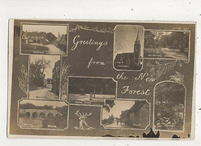 Greetings From The New Forest Hampshire 1916 RP Postcard Willsteed