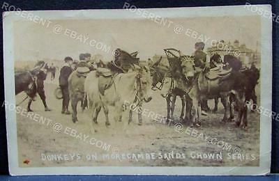 1906  Donkeys on Morcambe Sands - Chown Series - Real Photo Postcard