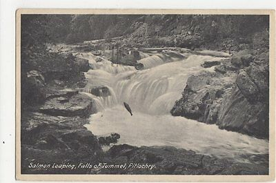 Salmon Leaping Falls Of Tummel Pitlochry 1932 Postcard 0893