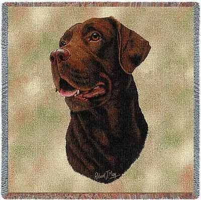Lap Square Blanket - Chocolate Labrador Retriever by Robert May 1428