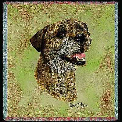 Lap Square Blanket - Border Terrier II by Robert May 2355