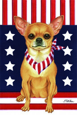 Large Indoor/Outdoor Patriot (TP) Flag - Chihuahua 75046