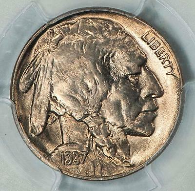 1937 D PCGS MS66 Buffalo Nickel Item#T6797