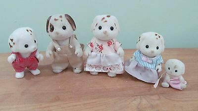 Chocolate Dalmation Family With Baby