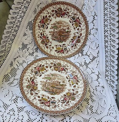 Ridgway Staffordshire Eng Woodland Dinner Plates X 2~Brown Multi Color  On White