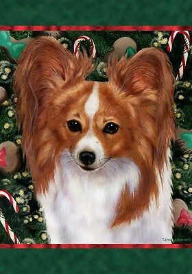 Large Indoor/Outdoor Holiday Flag - Red & White Papillon 14064