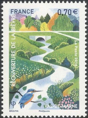 France 2016 Kingfisher/River/Birds/Nature/Conservation/Environment 1v (n45746)