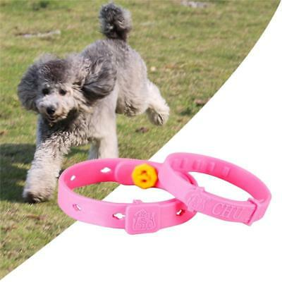 Pet Dog and Cat fleas Ticks Adjustable Collar Protection Neck for Tick Insect CB