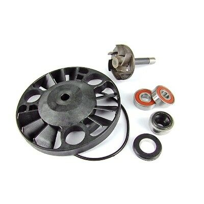 WATER PUMP REPAIR KIT GILERA DNA Runner 125 180 Piaggio Beverly 200 X9 125cc