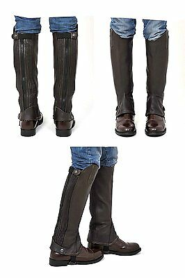 Riders Trend Kid's Children's Full Grain Leather Half Chaps Brown CL Tall 14""