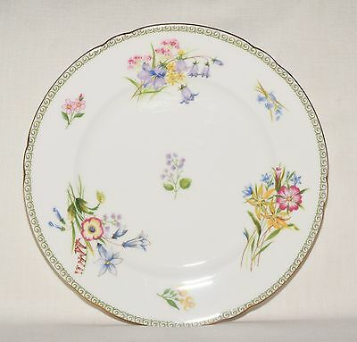 Shelley Wild Flowers Beautiful Vintage Bone China Salad Plate 8""