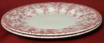 """Crown Ducal Early English Ivy (Joy) Pink 7 3/4"""" Salad Plates Dishes- NICE!"""