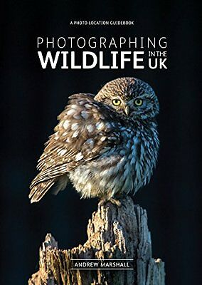 Photographing Wildlife in the UK: Where and How to Take Great Wildlife Photograp